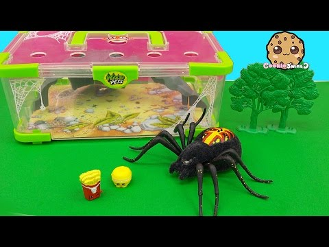 Shopkins Visit Interactive Attack Wild Pets Exclusive Spider In Cage Habitat at Zoo - Cookieswirlc - UCelMeixAOTs2OQAAi9wU8-g