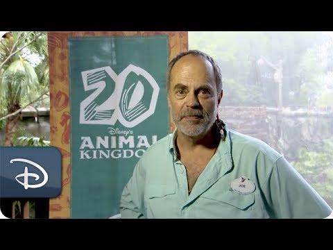 iNSIDE Disney Parks - Disney's Animal Kingdom Episode - UC1xwwLwm6WSMbUn_Tp597hQ