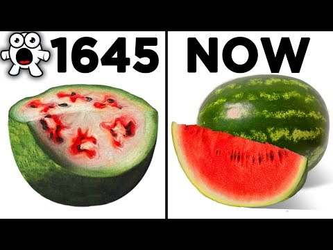Top 10 Foods That Originally Looked Totally Different - UCkQO3QsgTpNTsOw6ujimT5Q