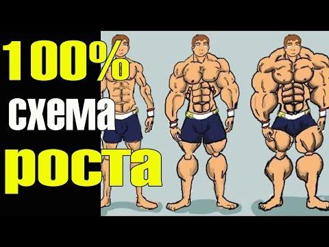 Мышцы начнут расти даже у дрища! - UC6Qkbg501AQodtwDGiEQR_Q