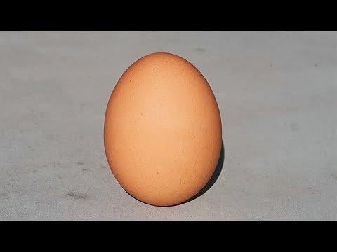 8 Egg Gadgets put to the Test - Part 6 - UCe_vXdMrHHseZ_esYUskSBw