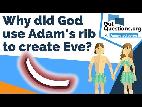 Why did God use Adams rib to create Eve?