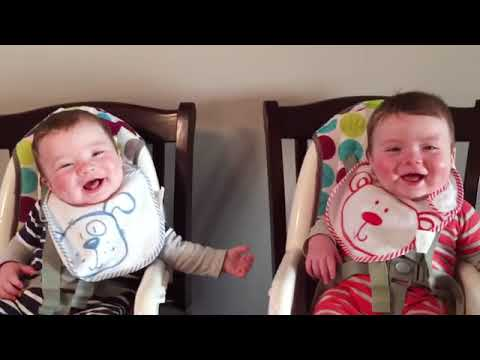 Cutest Chubby Baby Twins Playing Together   Cute Baby Video