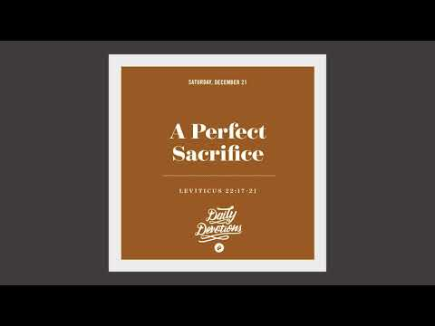 A Perfect Sacrifice - Daily Devotion