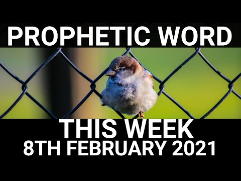 Prophetic Word for This Week 8 February 2021