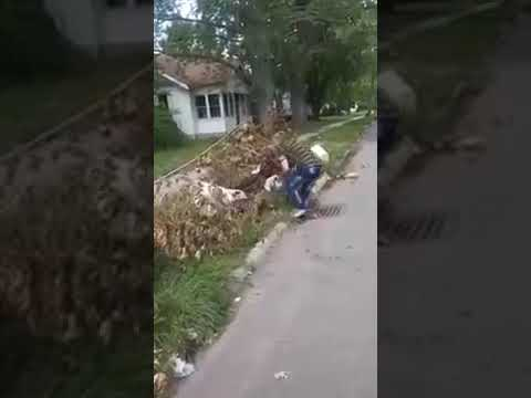 Pitbull saves his owner from a stray dog attack!!!