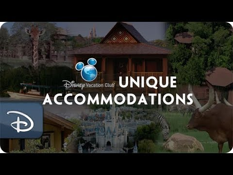 5 Unique Disney Vacation Club Accommodation Options - UC1xwwLwm6WSMbUn_Tp597hQ