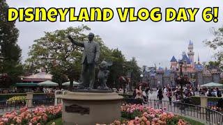 Disneyland Vlog Day 6 - Josh Arrives in Disneyland!! - Magical Mondays #109