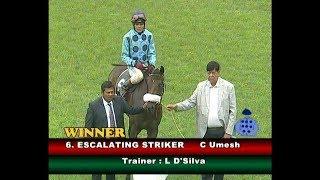 Escalating Striker with C Umesh up wins The Vijays Conquer Plate Div-1 2019