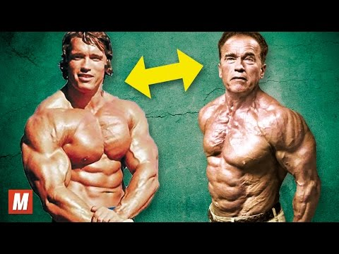Arnold Schwarzenegger | From 17 To 70 Years Old - UCXAHpX2xDhmjqtA-ANgsGmw