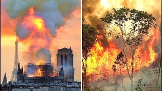 The Notre Dame Fire Was Reported In Minutes The Amazon Rainforest Has Been On Fire For 3 Weeks