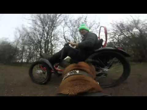 Boma7 & DogCam; All Terrain Wheelchair fun #DoggonBoma
