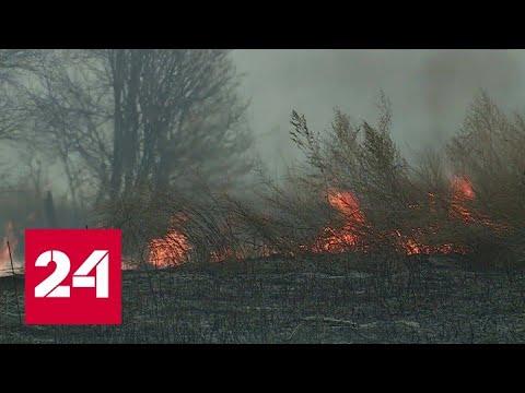 В Новосибирской области продлен режим повышенной готовности из-за пожаров  