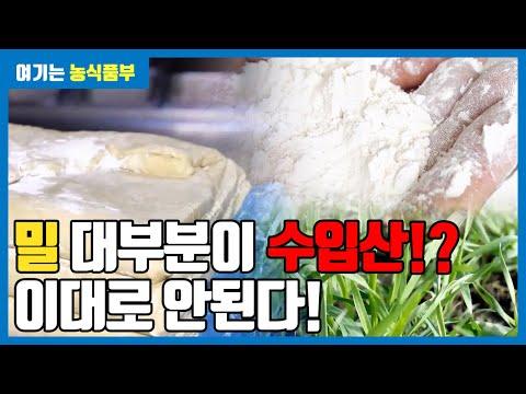 제1차 밀 산업 육성 기본 계획 | 해피 우리밀