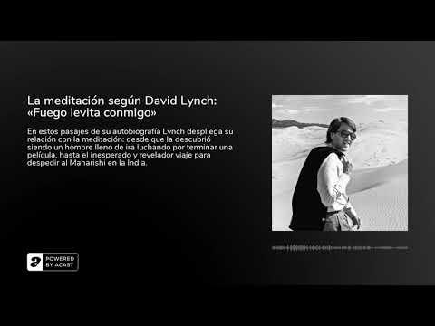 Vidéo de David Lynch