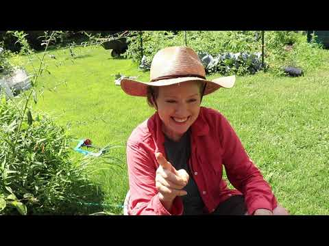 The BATTLE heats UP | Garden Transformation Part 2 // Late Bloomer