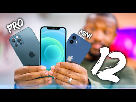 NEW iPhone 12 VS iPhone 12 Mini VS iPhone 12 Pro - What's the Difference?
