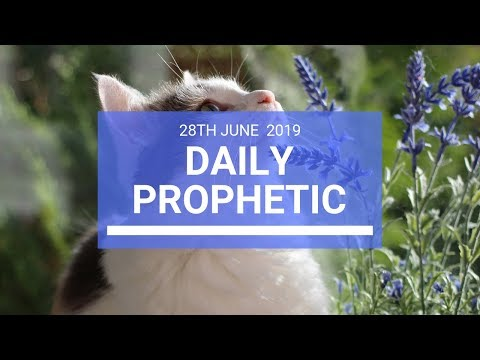 Daily Prophetic 28 June 2019 Word 3