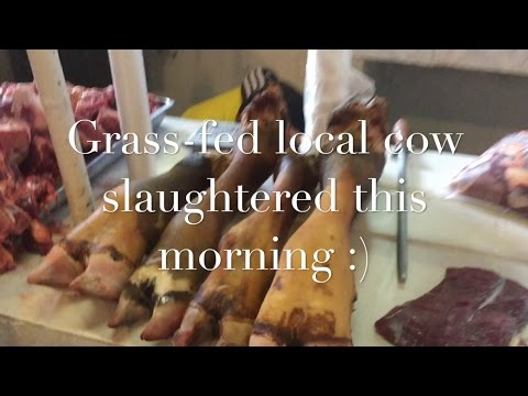 Vlog, day in the life - KETO SHOPPING for GRASS FED BEEF, Sunday Market in the ANDES of ECUADOR