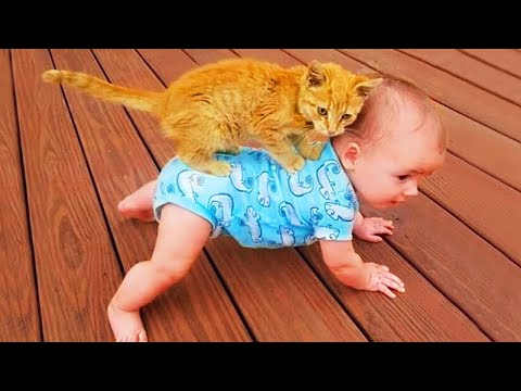 """CATS or BABIES"""" Which are most Cute and Funny"""" - Try Not To Laugh Challenge"""