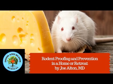 Rodent Proofing and Prevention in a Home or Retreat