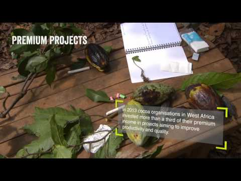 Kakaokooperative ECOOKIM i Elfenbenskysten