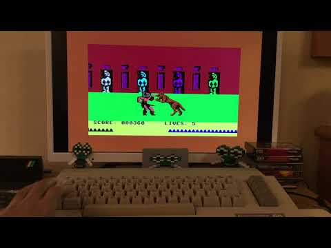 Fighting Warrior (Melbourne House) game ending hack for the Commodore 64
