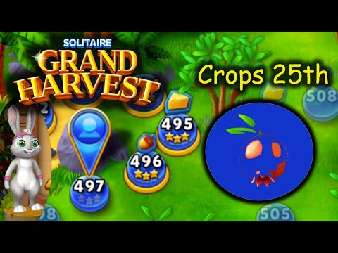 SGH E497 ~ 501   25th Crop Section 2 (Solitaire Grand Harvest)