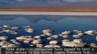 State-run firms set up JV to mine for lithium, cobalt overseas