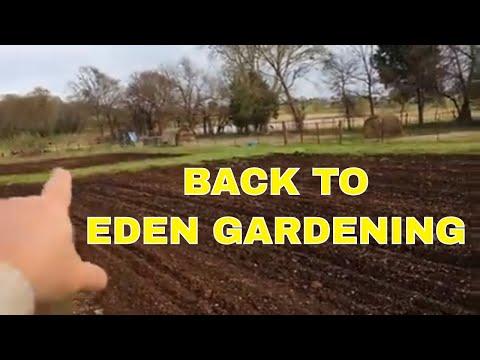 BACK TO EDEN GARDEN~STOPPING EROSION