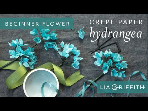 How to Make a Hydrangea Bloom - Botanical Garden Starter Flower