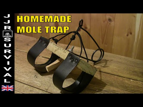 Homemade Mole Trap