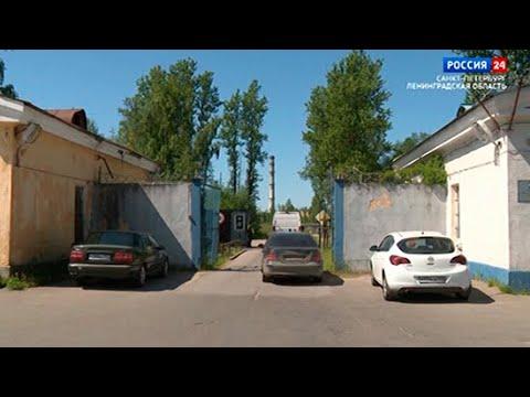 ВЕСТИ 24  Санкт-Петербург от 08.06.2021