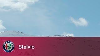 Alfa Romeo Stelvio – I've been waiting for you