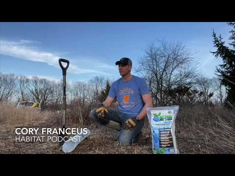 Planting Habitat Trees & Shrubs Correctly – KFP Retain – Root Moisture