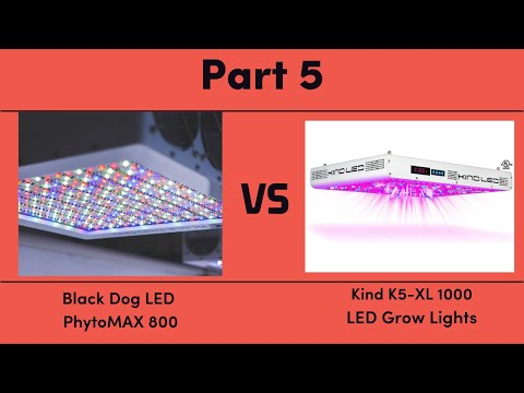 Black Dog LED PhytoMAX 800 vs. Kind K5-XL1000 LED Grow Lights - Part 5