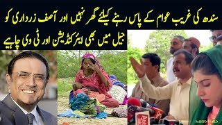 Zardari Ko TV Chahye - PTI Haleem Adil Sheikh Reaction On Bilawal Sindh Government Performance