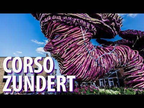 Biggest Flower Parade- Corso Zundert 2018 Netherlands photo