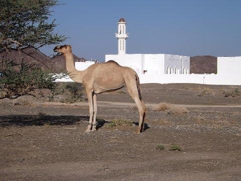 Cestovatelská přednáška o Ománu