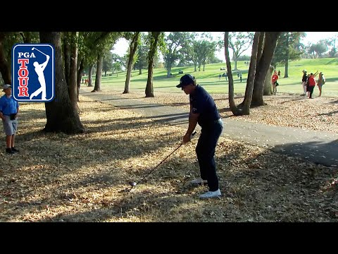 Phil Mickelson's driver from the woods leads to improbable birdie at Fortinet | 2021