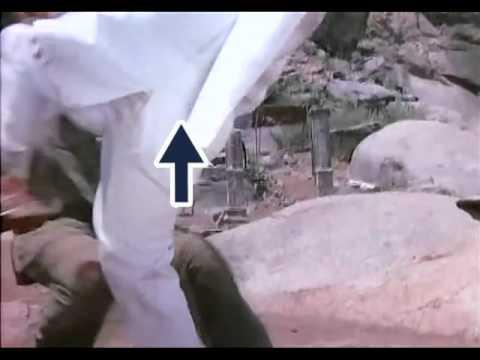 Thakur's Hands Found!