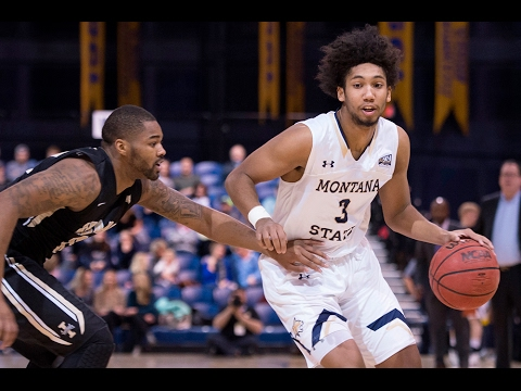 Montana State's Tyler Hall - #BigSkyMBB Player of the Week