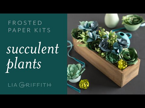 Frosted Paper Succulents Kit