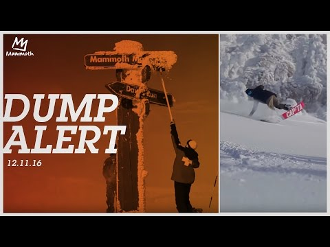 DUMP ALERT || 12.11.16
