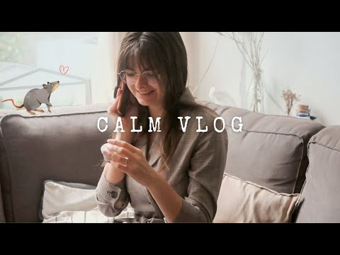 A Quiet Day At Home 🐀 Calming Vlog