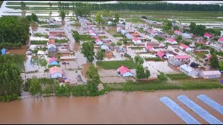 Rain Triggered Floods Ruin Farmland, Causing Heavy Economic Losses in Northeast China