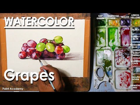 How to Paint Grape Fruits in Watercolor