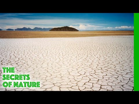 Salt, Tears of the Earth - The Secrets of Nature - UCVGTgXC1P--xM480Z6DqyAg