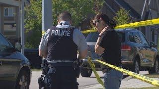 Car chase and street brawl leave B.C. neighbourhood shaken
