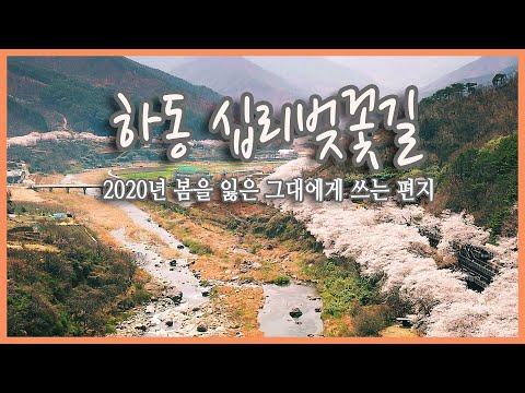 경남 하동 십리벚꽃 길 국내여행지추천, 하동여행, 봄 여행, 봄꽃여행